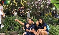 Mehr als eine Million Touristen besuchten Blumenfest in Ho Chi Minh Stadt