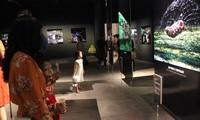 """Fotoausstellung """"Entdeckung der Insektenvielfalt in Vietnam"""""""