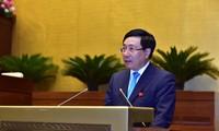 Vizepremierminister Pham Binh Minh: Bemühung um die Umsetzung der Ziele und Pläne 2019