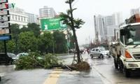 Provinzen beseitigen Folgen des Taifuns Wipha