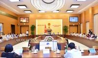 Ständiger Parlamentsausschuss berät über das Gesetz zur Organisierung des Parlaments