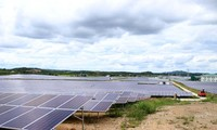 Die Potentiale aus dem Solarenergieprojekt Cu Jut Dak Nong