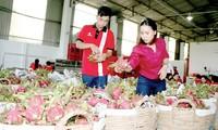 Export von landwirtschaftlichen Produkten und Nahrungsmitteln beträgt fast 34 Milliarden US-Dollar