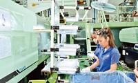 Verbesserung der Qualität der vietnamesischen Arbeitskräfte