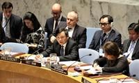 Vietnam leitet Sitzung des UN-Sicherheitsrats zur Lage in Israel und Palästina