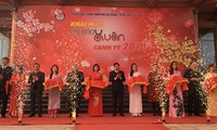Eröffnung des Fests der Frühlingszeitungen 2020 in Bac Giang