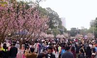 Covid-19: Das Vietnam-Japan-Fest 2020 wird verschoben