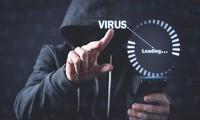 EU fordert ein Ende der Cyberangriffe
