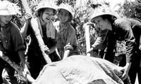 Ly Viet Hung – ein enthusiastischer Komponist für Soldaten