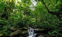 Nationalpark Pu Mat als Heritage Park der ASEAN aufbauen