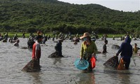 Fischfangfest Dong Hoa in Provinz Ha Tinh