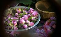 Lotustee verbindet Vergangenheit und Gegenwart