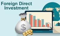 Erstes Halbjahr: FDI beträgt 15,67 Milliarden US-Dollar