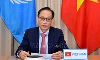 Vietnam nimmt an hochrangiger Online-Diskussion des UN-Sicherheitsrats teil