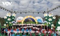 Eröffnung des Blumenfests So Binh Lieu 2020
