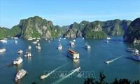 Provinz Quang Ninh empfängt mehr als 140.000 Touristen an den ersten zwei Tagen des neuen Jahres