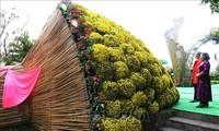 Modell des großen Straußes aus Garten-Chrysanthemen stellt vietnamesischen Rekord auf