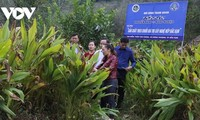 Starker Schritt zur Umwandlung des Genossenschaftsmodells neuer Art in Bac Kan