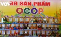 """Soc Trang: Resultat aus dem Programm """"Eine Gemeinde, ein Produkt"""""""