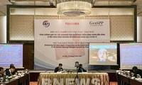 Vietnam und Japan arbeiten in nachhaltiger Entwicklung von Energie in Mekong-Subregion zusammen