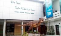 Entdeckung des vietnamesischen Naturmuseums