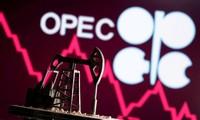 USA drängen OPEC Plus zur Erhöhung der Ölkapazität für Wirtschaftserholung