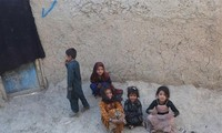 Taliban fordern nach dem Bleiben der UNO für Fortsetzung humanitärer Aktivitäten