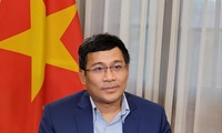 Perspektiven von Vakzin-Quellen für Vietnam bis Jahresende