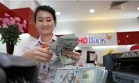 Vietnam's forex reserves hit record high