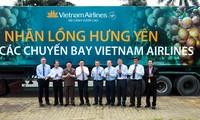 Vietnam Airlines to serve fresh longan