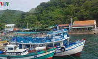 Vietnam sets up National Steering Committee on IUU Fishing Prevention