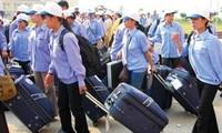 Foreign markets to reopen door for Vietnamese workers