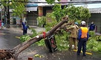 5 killed in storm Noul