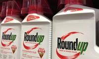 US court denies appeal in Roundup cancer case