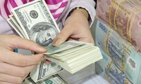 Vietnam, US agree on currency practices