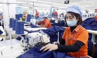 Vietnam on track to achieve record  600 billion USD in foreign trade: MoIT