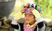 """ประเพณี """"búa phàn tziu"""" ของเผ่าเย้าเตี่ยนในจังหวัดเซินลา"""