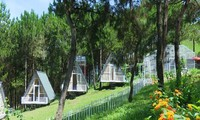 Pu Nhi Farm - แหล่งท่องเที่ยวที่ควรแวะเยือนบนเส้นทางท่องเที่ยวภาคตะวันตกเฉียงเหนือ