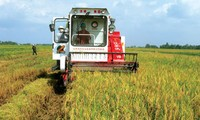 Vietnam, Japan foster agricultural cooperation