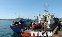 A ship from Binh Dinh successfully rescued