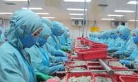 WTO's ruling on shrimp dumping lawsuit taken by Vietnam against the US