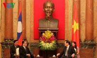 Vietnam, Laos strengthen comprehensive cooperation