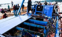 Vietnam Fisheries Association protests Chinese vessel's' sinking of Vietnamese fishing boat