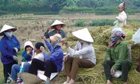 Vietnam to train 5.5 million rural workers by 2020