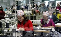 Vietnam preparing for opportunities and challenges created by TPP