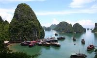 Foreign travel companies survey Vietnam's tourism potential