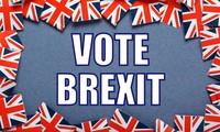 Britain before Brexit referendum