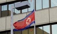 日本和朝鲜主张恢复政府级谈判