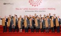 亚太经合组织成员支持越南承办2017年亚太经合组织系列会议