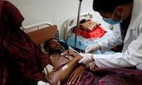 也门霍乱造成115人死亡